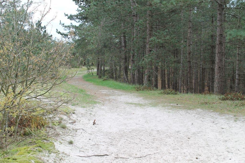 schoorl-2012-58